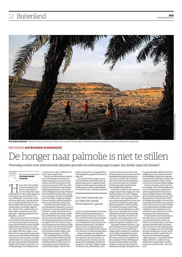 honger-naar-palmolie-is-niet-te-stillen